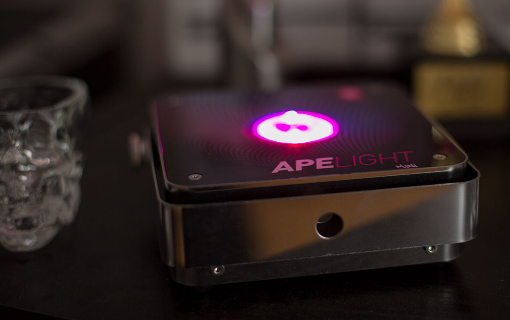 Ape Lights with W-ape and Daslight DVC4 GZM